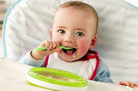 The papillas, the first step for your baby to eat solid
