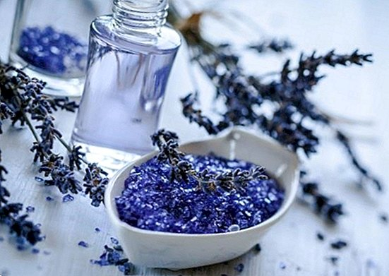 Uses, benefits and applications of lavender oil - beauty