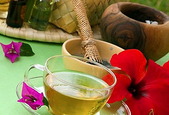Uses of green tea in beauty for the skin: its benefits - beauty