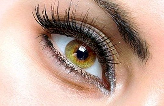How to make your eyelashes look bigger - beauty