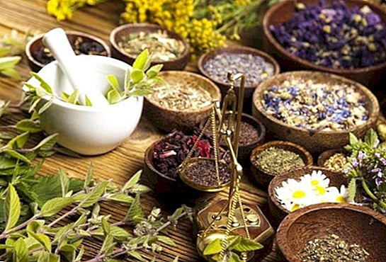 Plants and herbs to improve fertility naturally - pregnancy