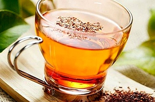 Can a pregnant woman drink rooibos tea? - pregnancy