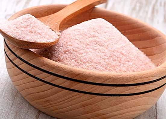 Salt of the Himalayas: what it is and benefits of the pink salt - nutrition and diet