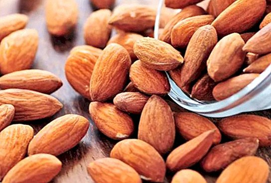 10 benefits and properties of almonds - nutrition and diet