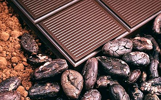 Benefits of cocoa, properties and contraindications - nutrition and diet