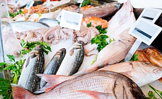 Tips when buying fresh fish and how to recognize it - nutrition and diet
