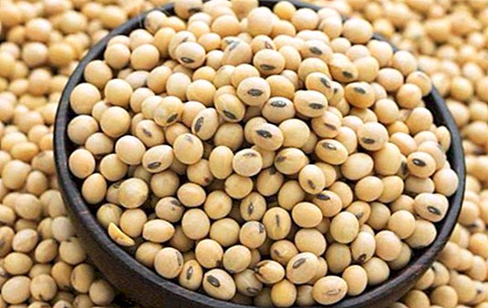 Soy isoflavones: benefits for women, sources and when to take them