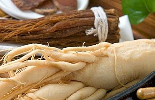 When it is not advisable to eat ginseng - nutrition and diet
