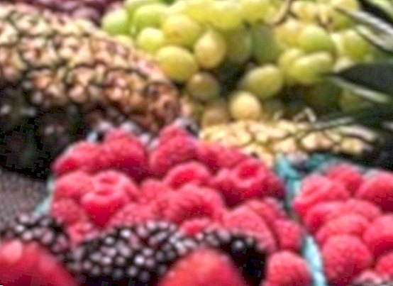 nutrition and diet - Cures of fruits
