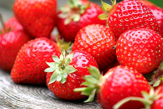 Strawberries: benefits for health and skin - nutrition and diet