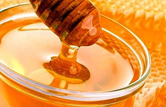 Contra-indicações de mel: quem não pode comê-lo