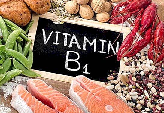 Vitamin B1 or thiamine: benefits and foods that contain it