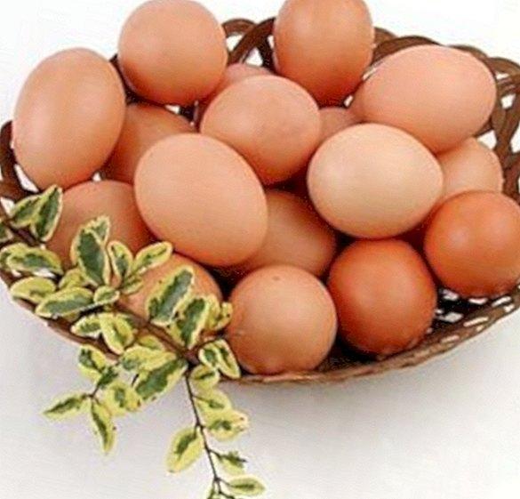 แคลอรี่ของไข่