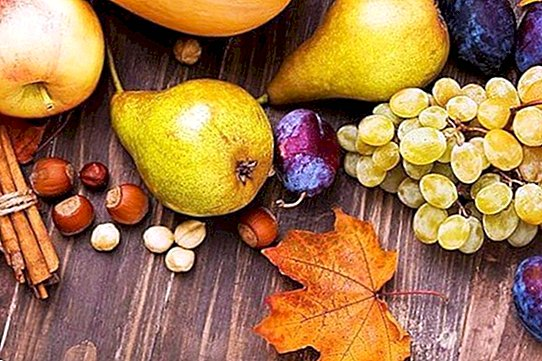 Fall fruits: the best foods to take care of - nutrition and diet