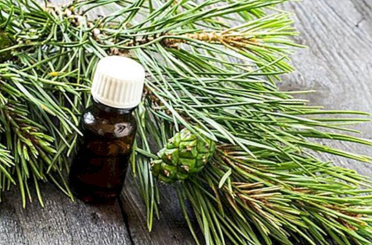 Korean pine oil, ideal for losing weight