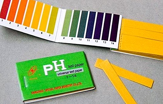 How to measure the pH of our body - medical tests