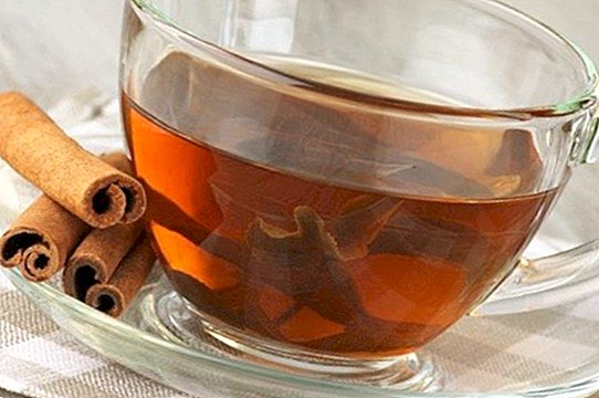Black tea with cinnamon: recipe, benefits and contraindications - recipes