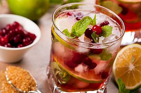 4 recipes for fruit cocktails without alcohol ideal for Christmas - recipes