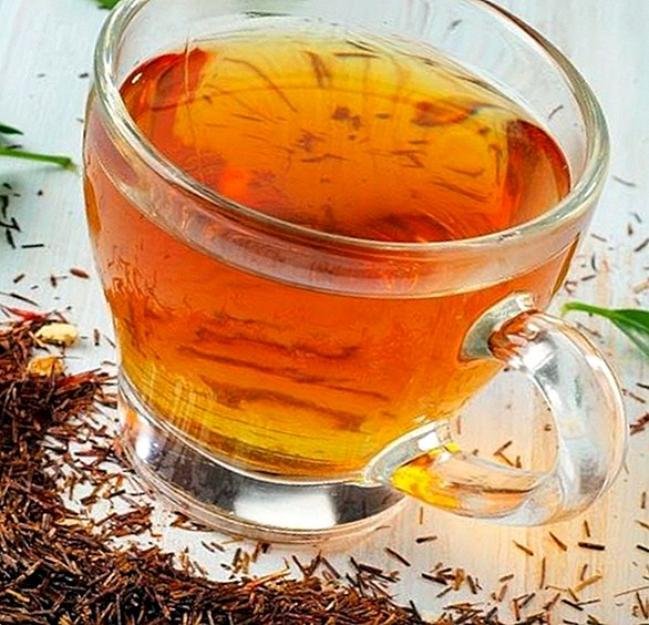 How to prepare a rooibos tea