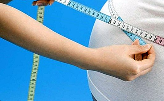 Remedies for the metabolic syndrome: useful tips and infusions - Natural medicine
