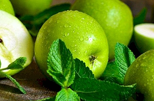 Home remedies with apple - Natural medicine