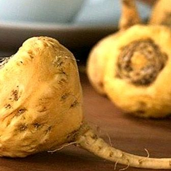 Meet the maca, powerful plant with benefits for men and women