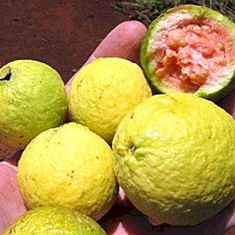 Τρώγοντας τα φρούτα με ή χωρίς το δέρμα;