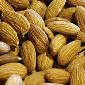 Attention aux amandes amères