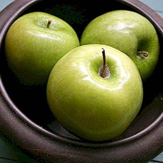 Remedy of cooked apple to cure the stomach