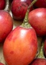 Tamarillo: benefits and properties