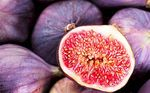 Figs, allies against autumnal asthenia