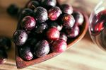 Benefits of tannins for health: natural antioxidants - nutrition and diet
