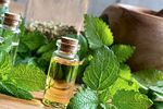 Discover how to prepare a relaxing bath with lemon balm